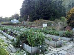 A garden of abundance