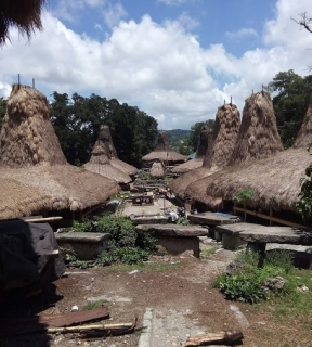 A traditional Sumbanese village